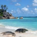 Les 3 plus belles plages du monde