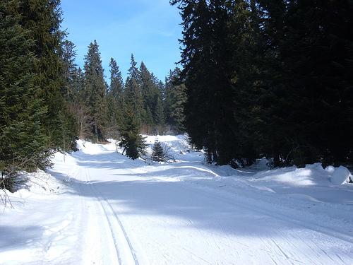 Piste de ski à La Feclaz