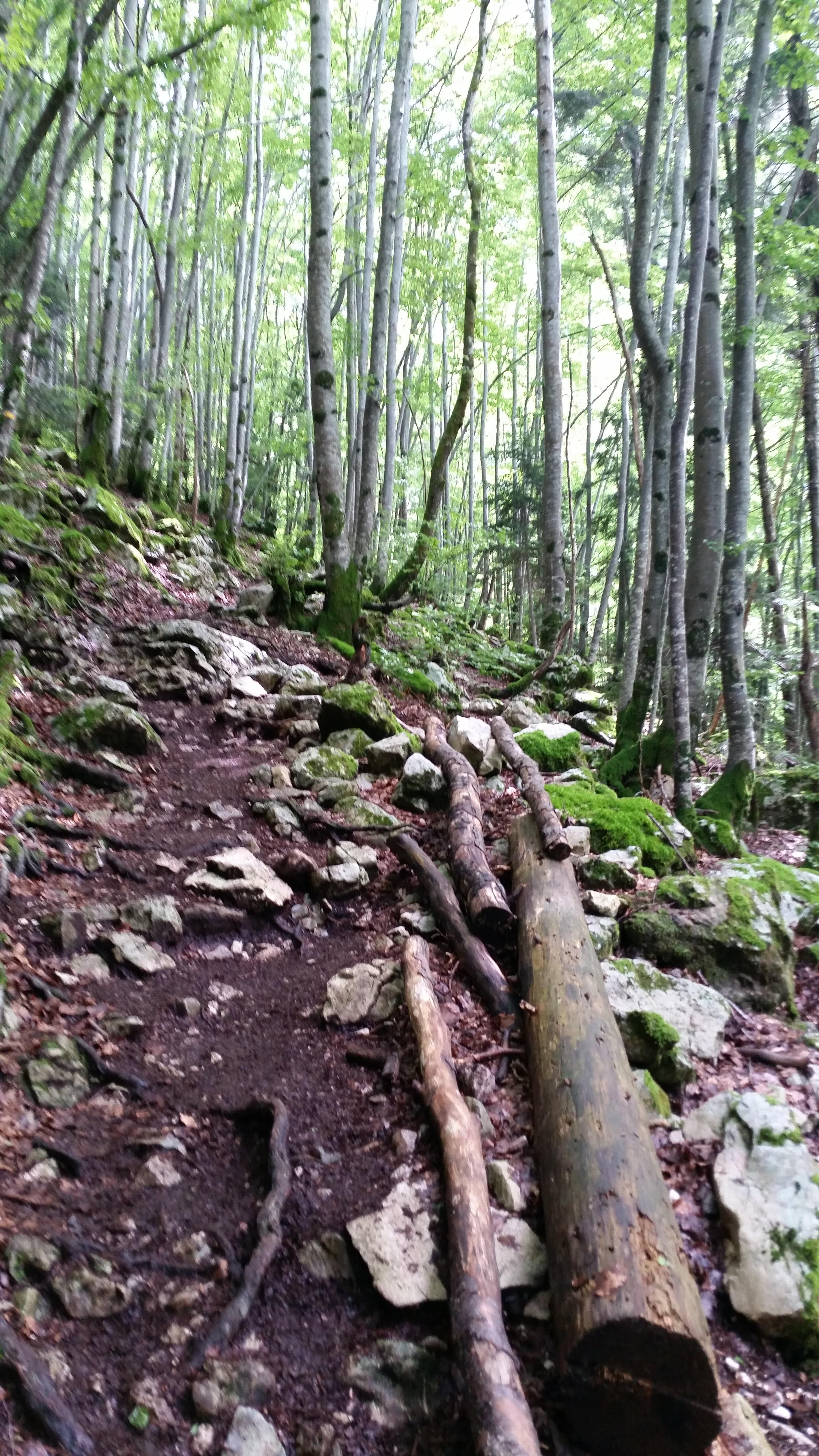 La chemin qui permet l'accès à la Grande Cascade