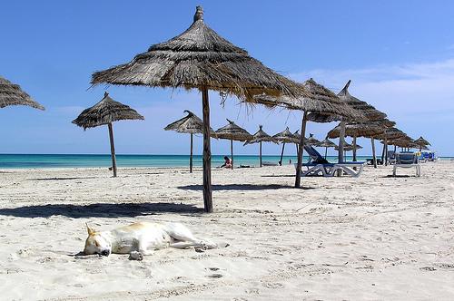 La plage de Djerba