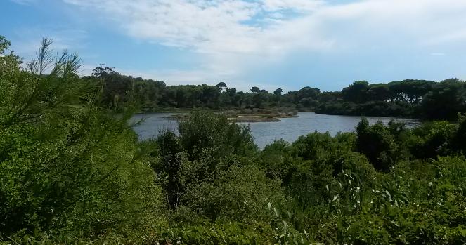 Lac de l'île Sainte Marguerite