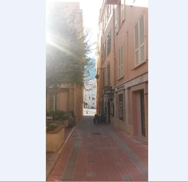 Ruelle à Monaco avec le Palais à l'arrière