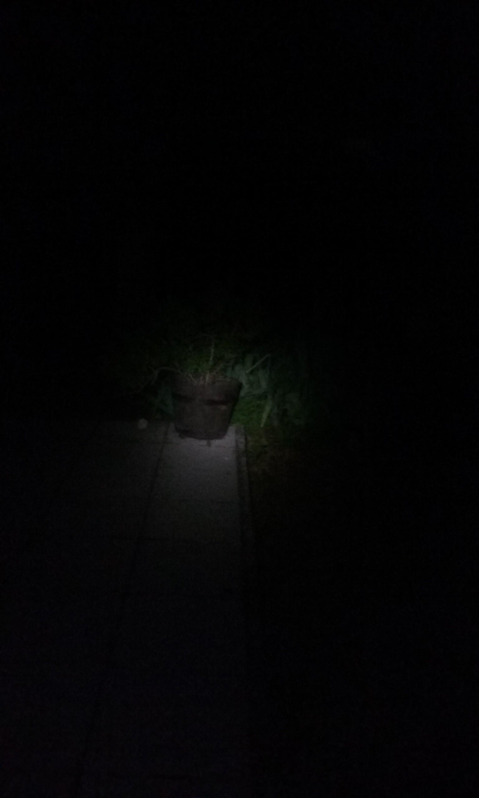 Test de la lampe de poche à l'extérieur en pleine nuit