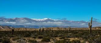 Parque Nacional Los Cardones - Cafayate - Argentine