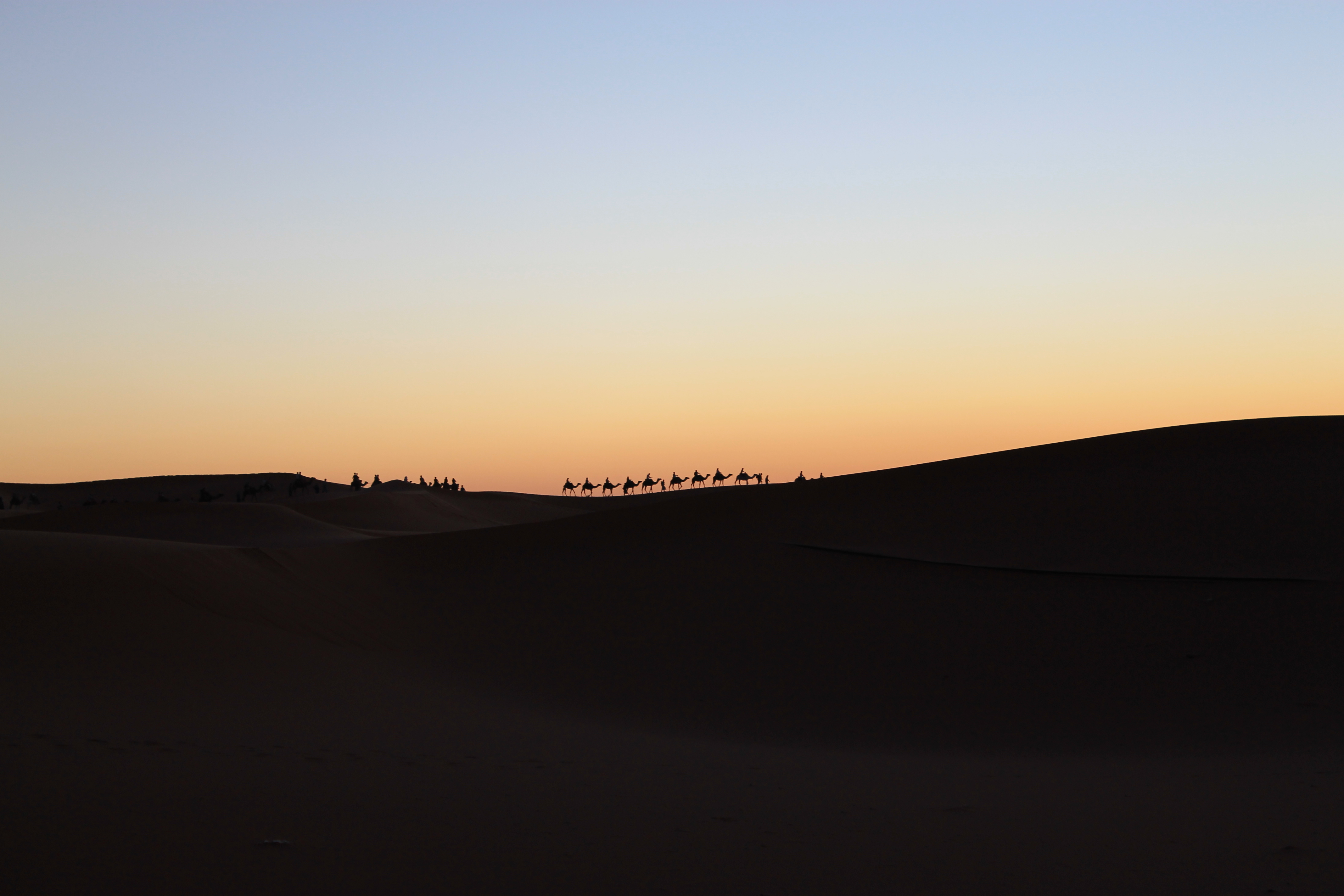 Une méharée à la tombée de la nuit au Maroc
