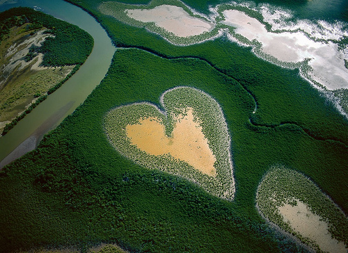 Photo issue du documentaire Home de Yann Arthus Bertrand