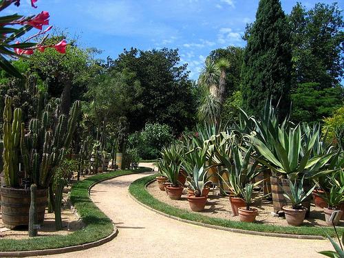 Le jardin des plantes au Parc de la Tete d'Or