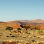 La Namibie : une destination idéale pour faire un voyage authentique en Afrique