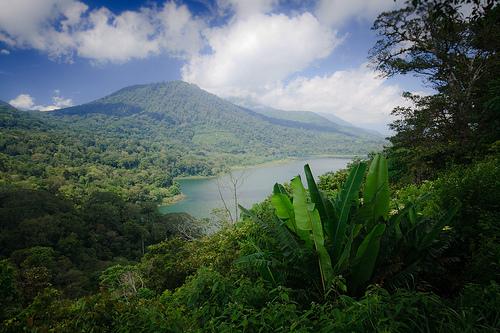Trek à Bali (Tamblingan)