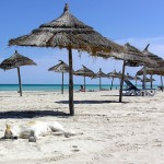 La Tunisie : la destination idéale pour passer un bon séjour cet été