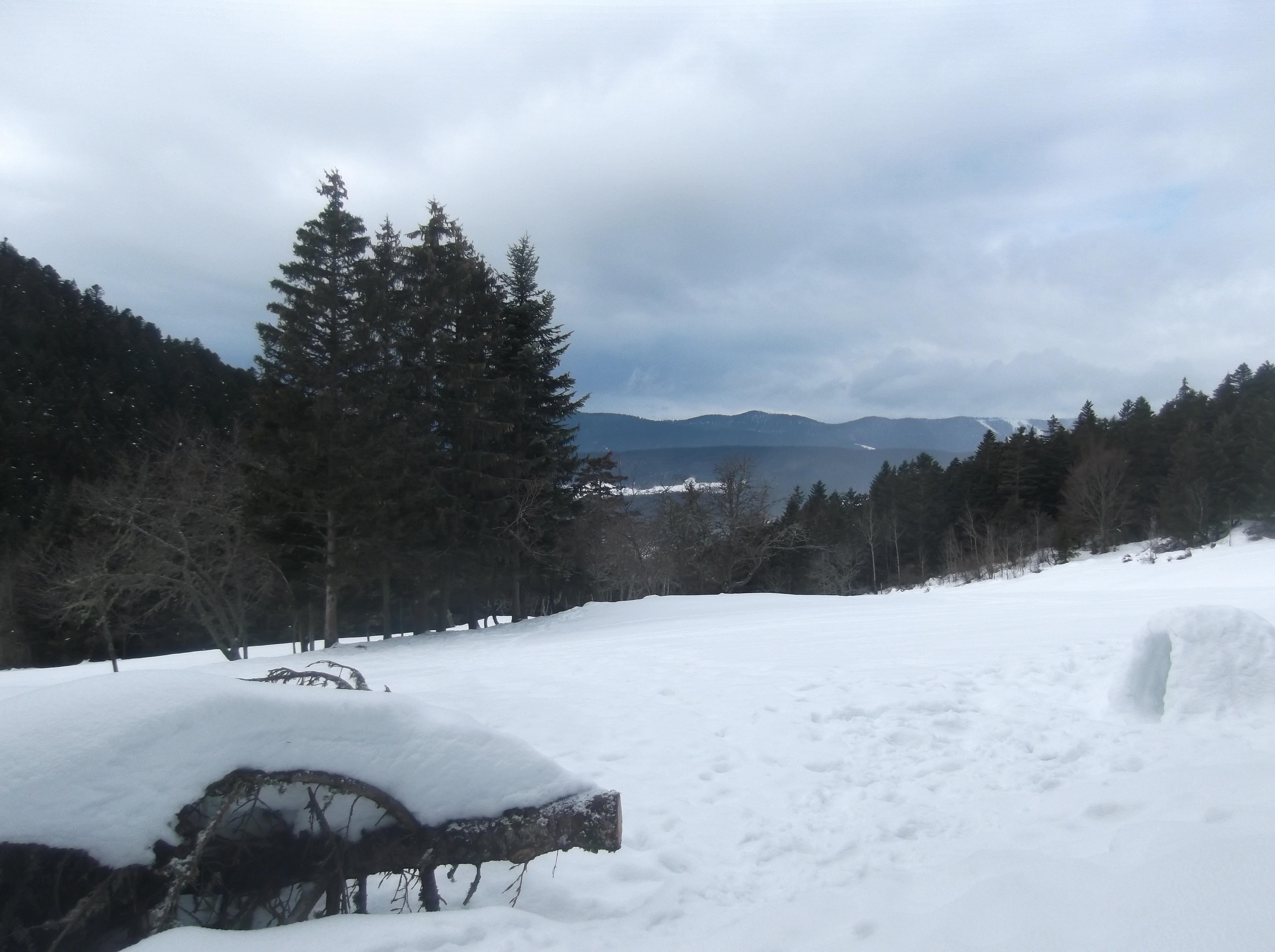 Un espace nature à la montagne