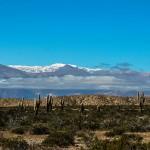Voyager en Argentine : notre sélection de 8 incontournables