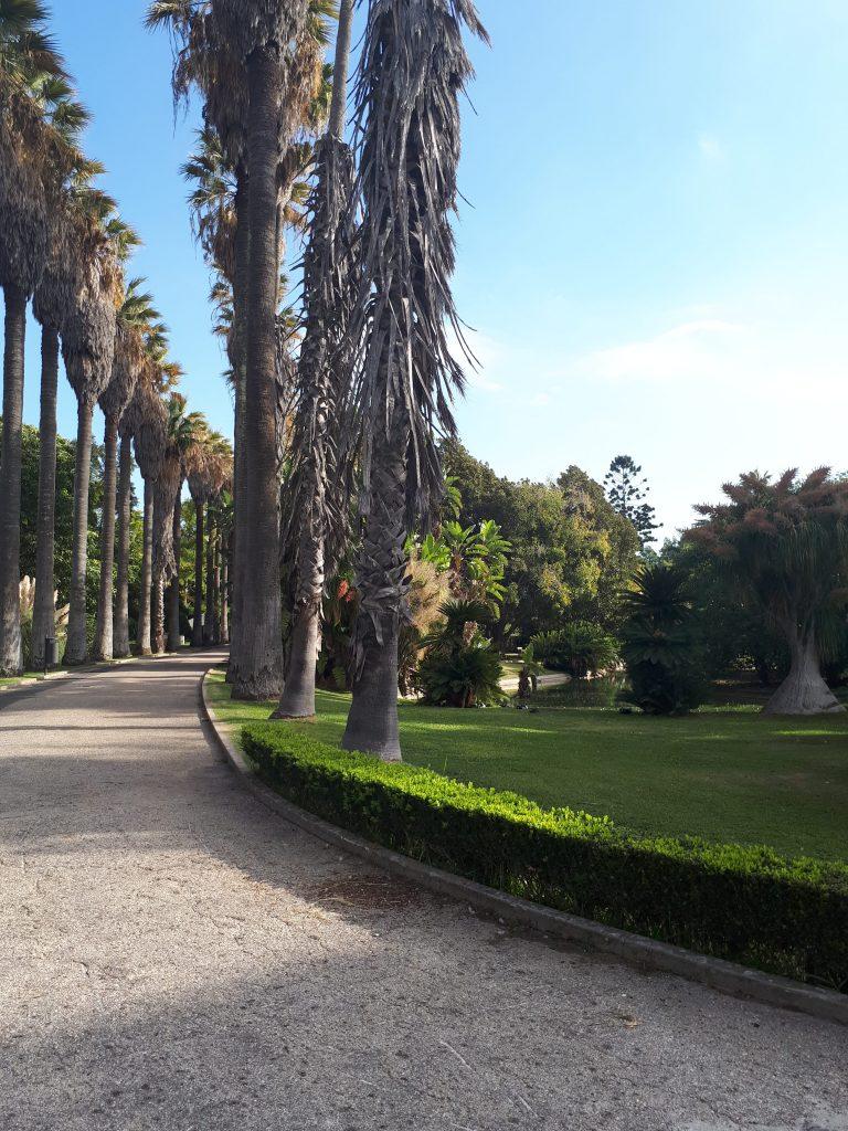 Jardin botanique de Lisbonne