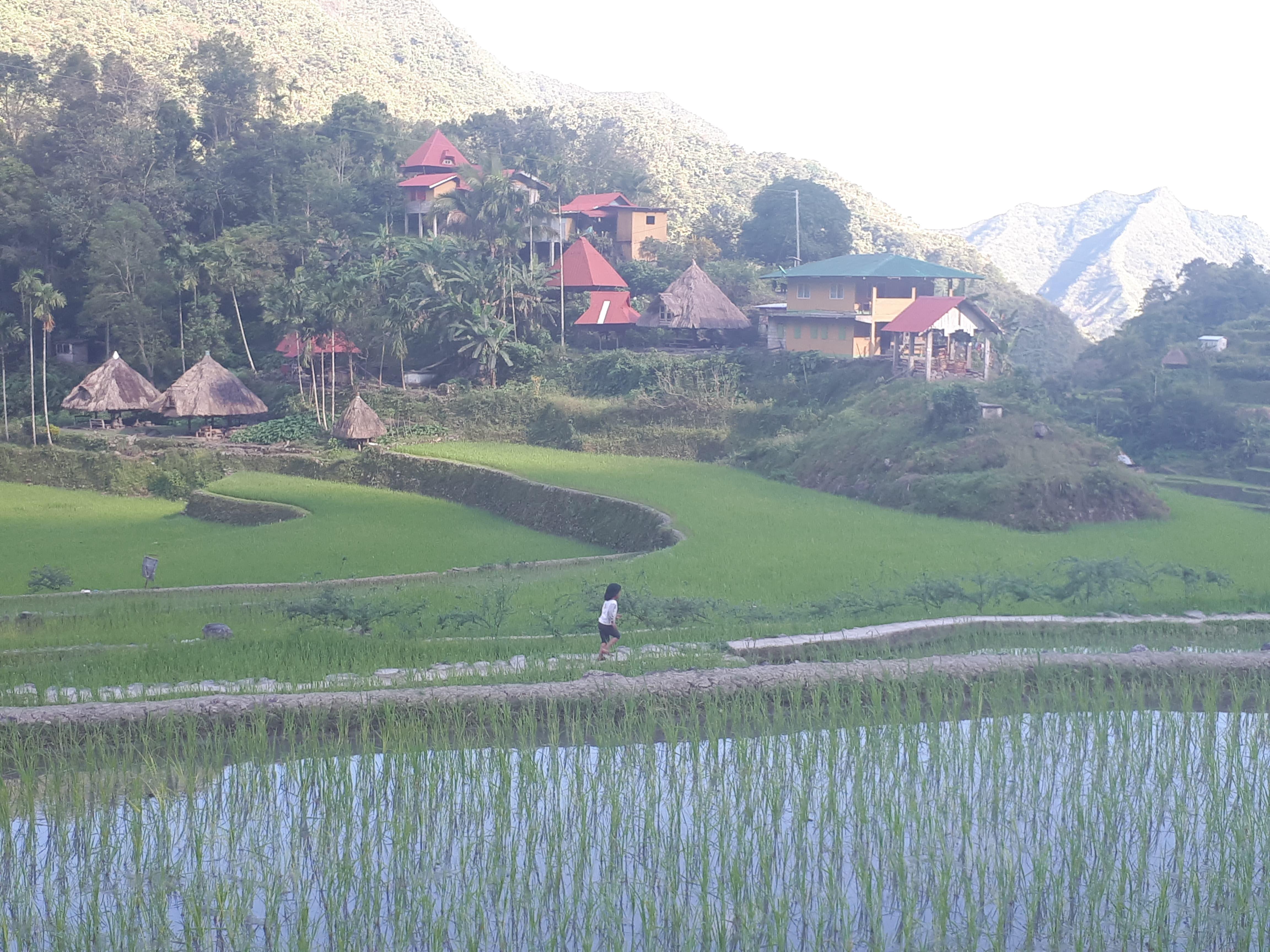Les rizières et le village de Batad