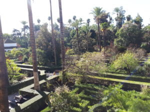 Les jardins de l'Alcazar - Séville