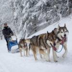 10 idées d'activités à pratiquer en montagne en hiver, et sans ski !