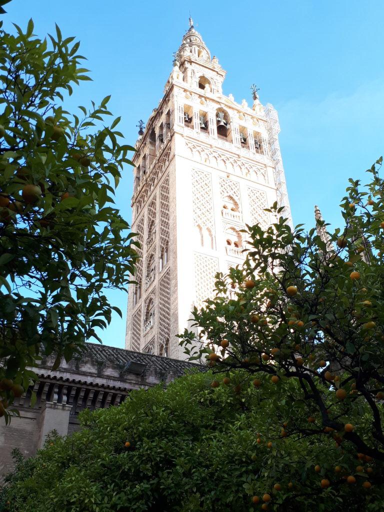 La Giralda - Séville