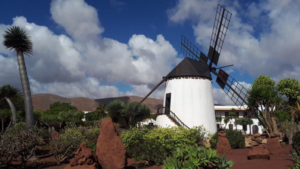 Moulin à vent et jardin du Museo del Queso Majorero