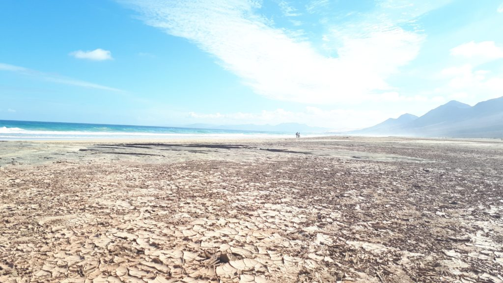 La terre craquelée de la plage de Cofete
