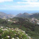 Carnet de voyage à Tenerife aux Canaries
